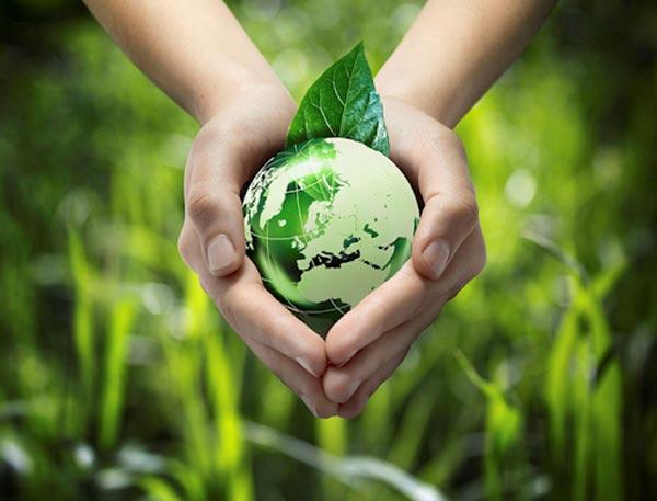 Xu hướng sử dụng vật liệu thân thiện với môi trường trong thi công và xây dựng